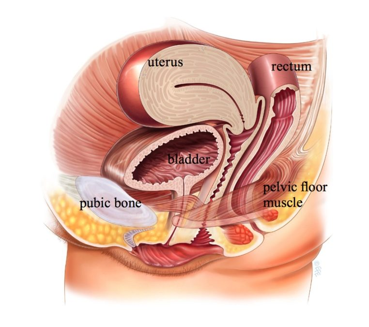 Types Of Bladder Treatment In London